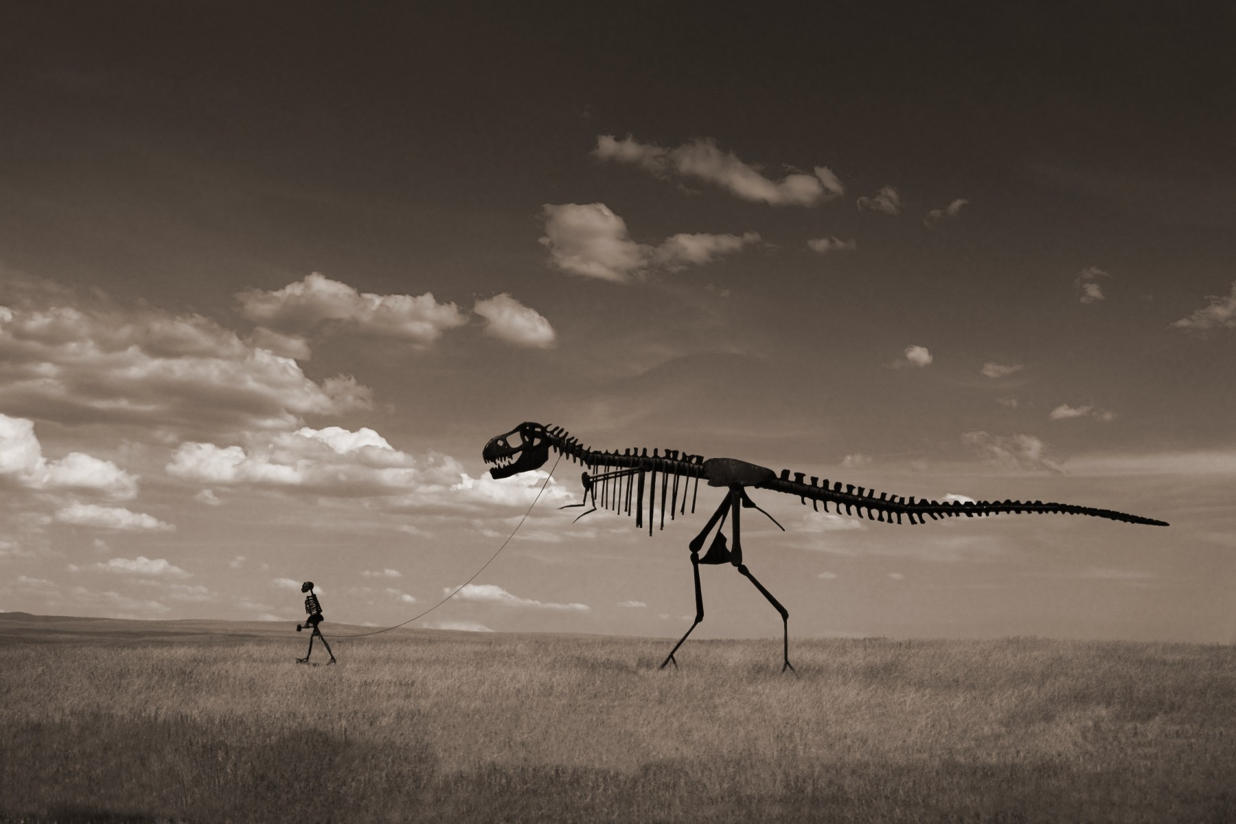 Walking Dinosaur copy